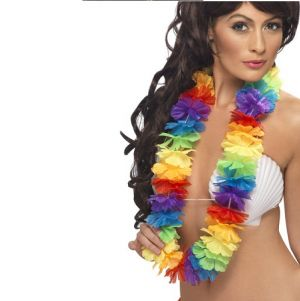Hawaiian Fancy Dress Deluxe Lei - Rainbow