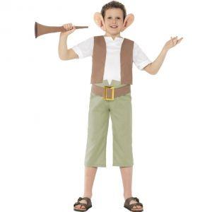 Childrens Roald Dahl BFG Costume