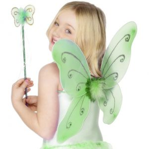 Childrens Butterfly Wings & Wand - Green