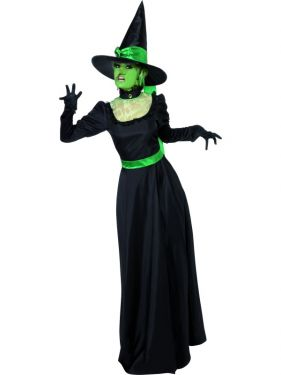 Halloween Wicked Witch of West Costume