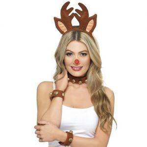 Christmas Fancy Dress Pin Up Reindeer Kit