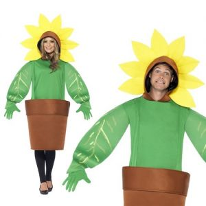 Sunflower Fancy Dress Costume