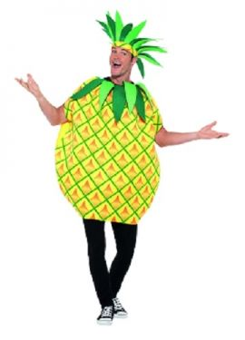Adult Pineapple Fancy Dress Costume