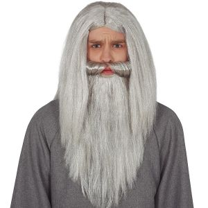Grey Wizard Wig & Beard