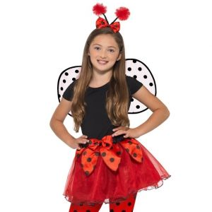 Childrens Lady Bug Ladybird Costume Set