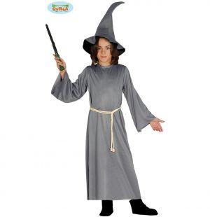 Childs Halloween Grey Wizard Magician Costume