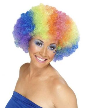 1970s Unisex Funky Afro Crazy Clown Wig - Rainbow