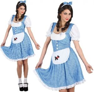 Ladies Country Girl Dorothy Fancy Dress Costume